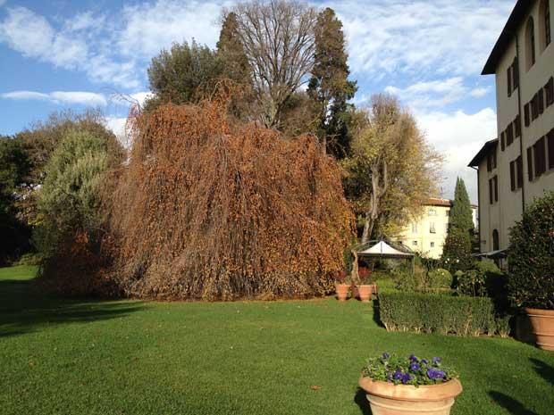 As cores do inverno no maior jardim particular de Florença