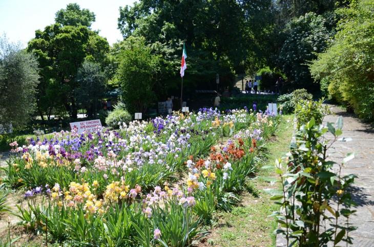 Primavera Em Floren A Visite O Giardino Dell Iris