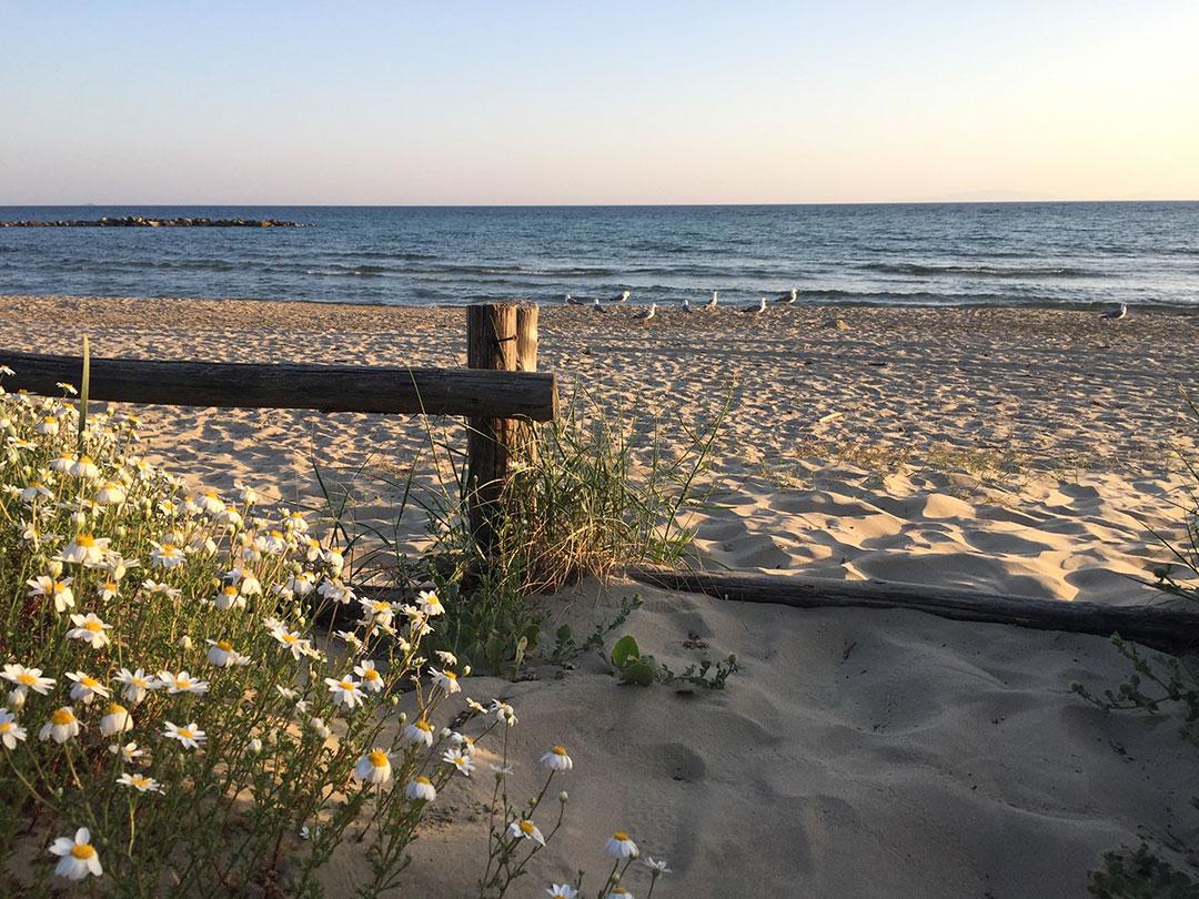 a tranquilidade de Pratoranieri em Follonica no final de maio
