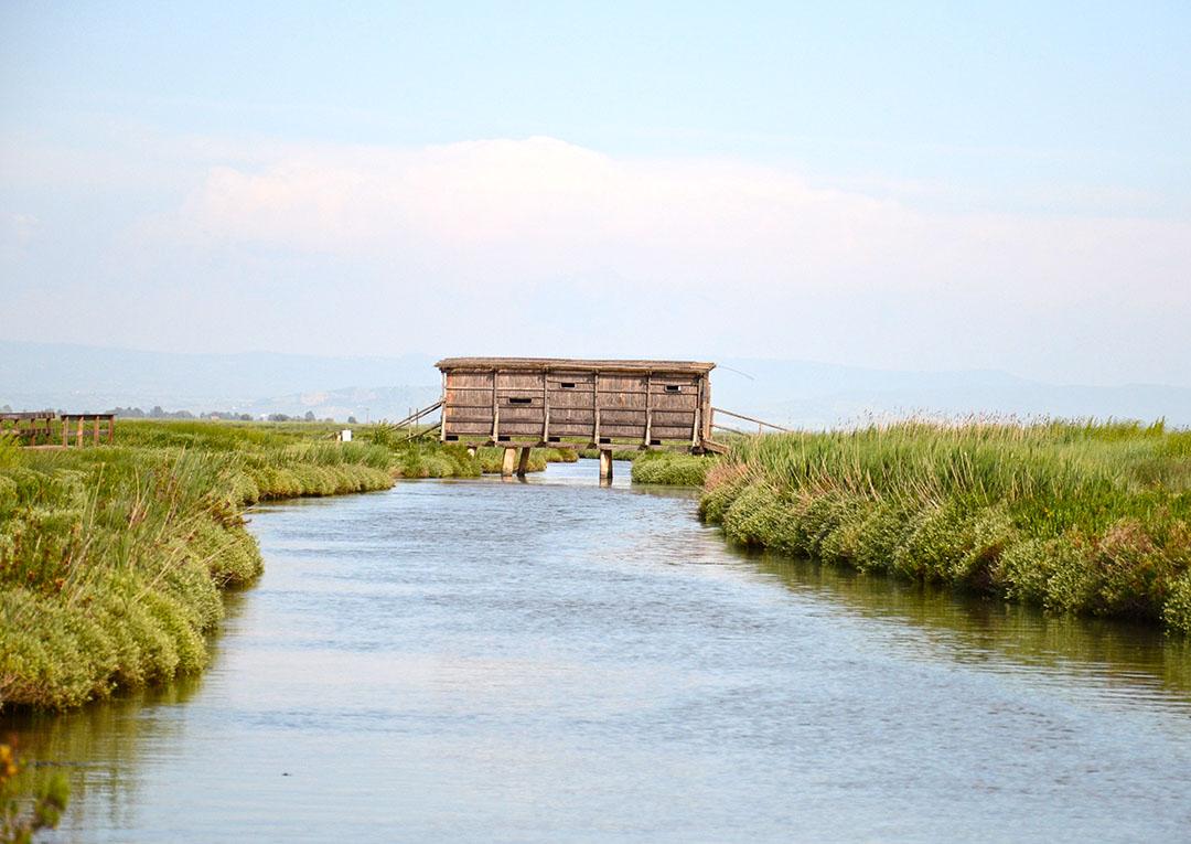 A casinha para observar os passaros na Reserva Natural Diaccia Botrona em Castiglione della Pescaia