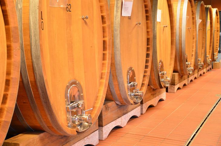collemassari-vinicola-toscana