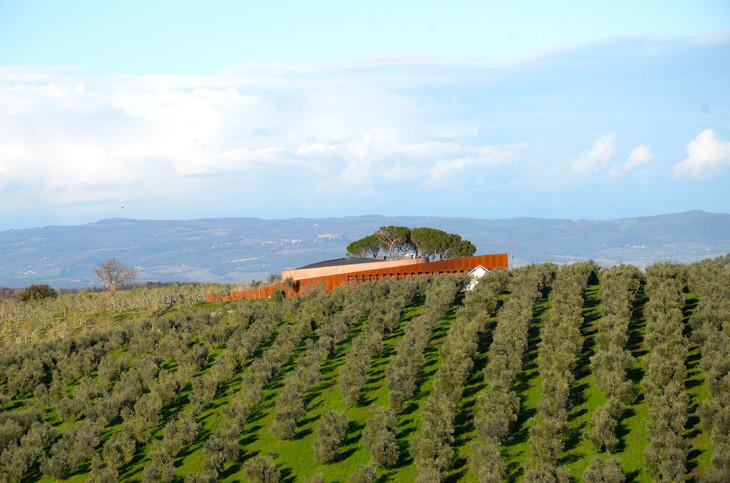 O Forum Fondazione Bertarelli rodeado pelas oliveiras e videiras da Toscana