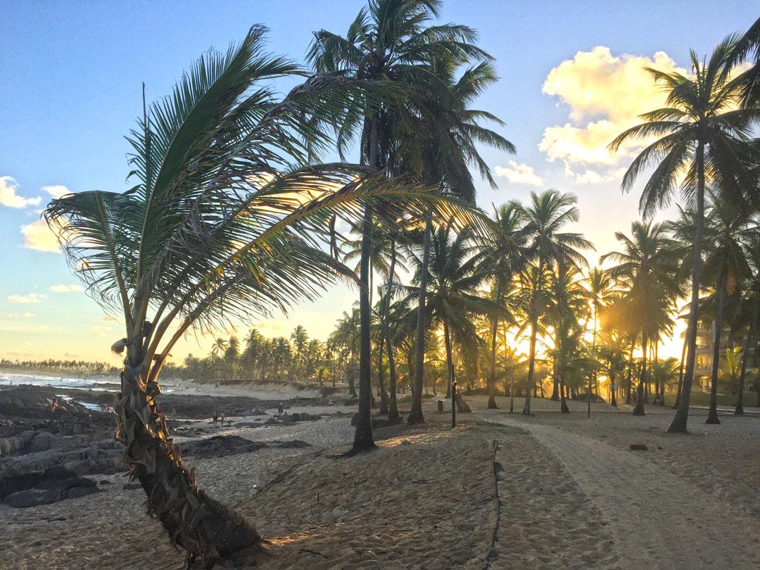 Um paraíso na Bahia