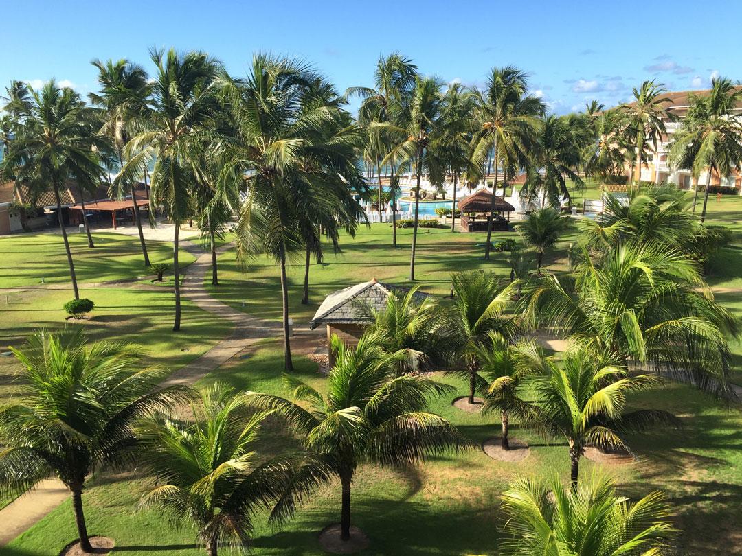 A vista do meu quarto: coqueiros, piscina, céu azul e mar...